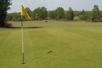 18 Holes of Golf For Two from £18 at New Forest Golf Club (59% Off)