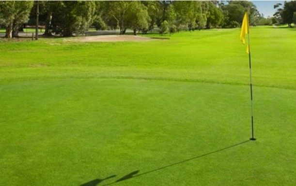 Super Sunday Golf for 2 at Ingol Village Golf Club including a Three Course Roast Dinner