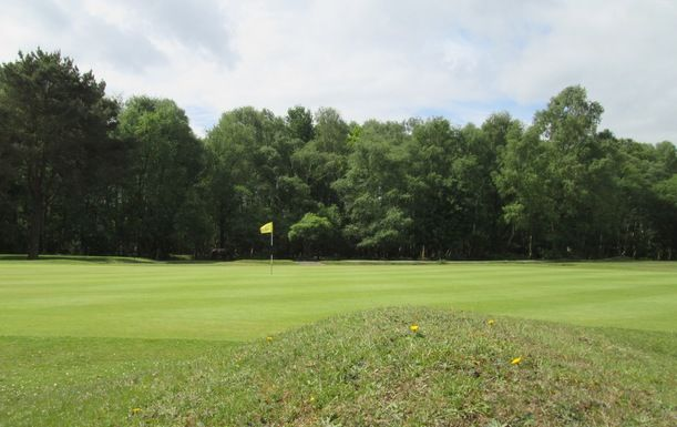 18 Holes of Golf for Two at New Forest Golf Club (mornings)