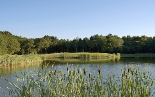 Limited Offer. 18 Holes for TWO at Wildwood Golf and Country Club including a Bacon Roll and Tea or Coffee each